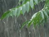 Los páramos, a természetes árvízvédelmi rendszer