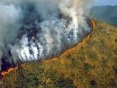 Előre jelezhetők a trópusi erdőtüzek?