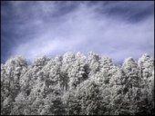 Húsvétkor tombolt a tél a Hudson-öböl partjainál