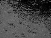 40 nap után érkezett meg az eső